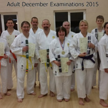biggleswade adult karate club